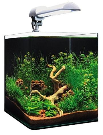 dennerle nanocube complete plus 20 liter mini. Black Bedroom Furniture Sets. Home Design Ideas