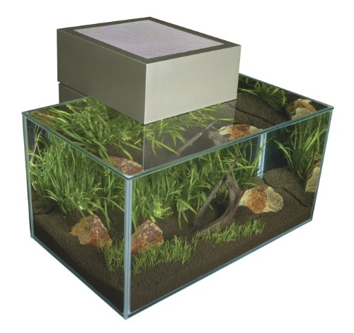 fluval edge nano aquarium zinnfarben mini. Black Bedroom Furniture Sets. Home Design Ideas