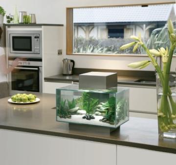 Fluval Edge Nano Aquarium, zinnfarben