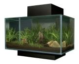 Fluval 15397 - Edge Nano Aquarium, schwarz - 1