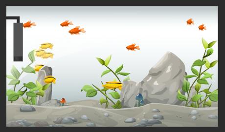 Mini Aquarium Fische