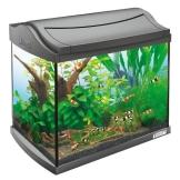 Tetra 171855 AquaArt Shrimps Aquarium-Komplett-Set 20 L, ideal für die Haltung und Zucht von Garnelen, anthrazit - 1