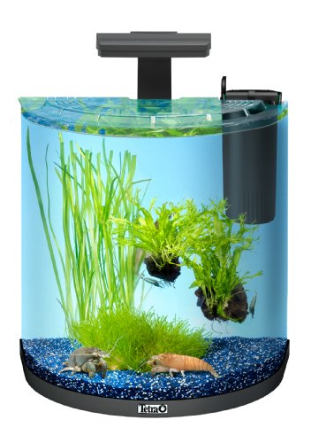 tetra aquaart explorer line krebs aquarium komplett set 30 liter mini. Black Bedroom Furniture Sets. Home Design Ideas