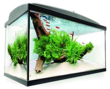 Aquael Aquarien – Einsteigerset – LED 54 Liter
